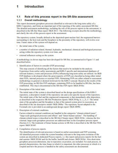 process report format