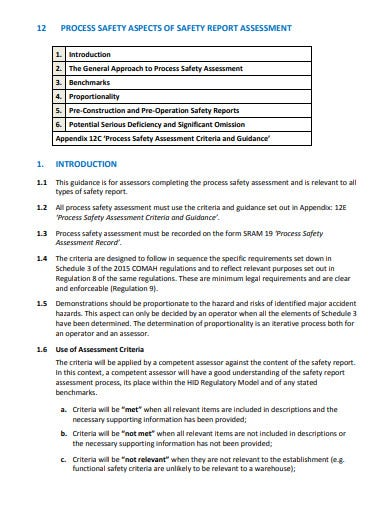 process safety report assessment template