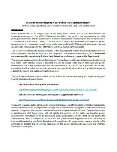 process of participation report template