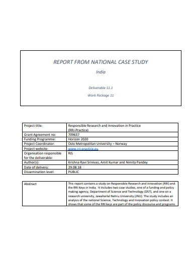professional case study report template