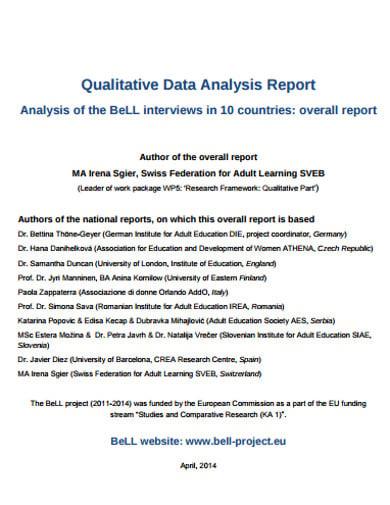 qualitative data analysis report template1