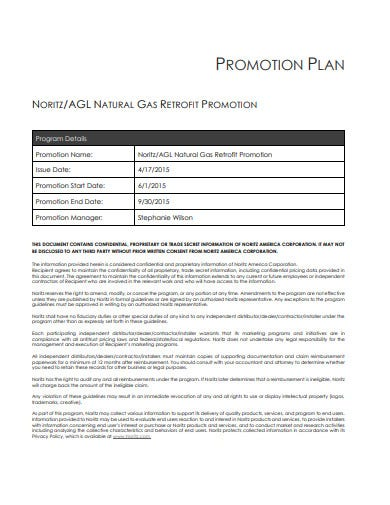 sample promotion plan template