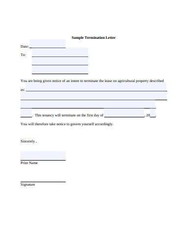 sample termination letter format