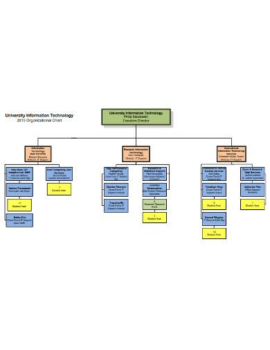 university it organizational chart