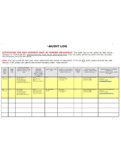 audit log format