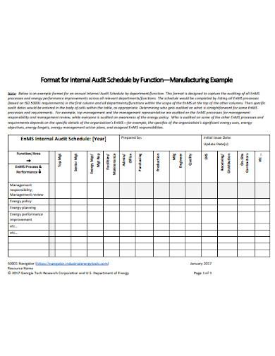 audit schedule format
