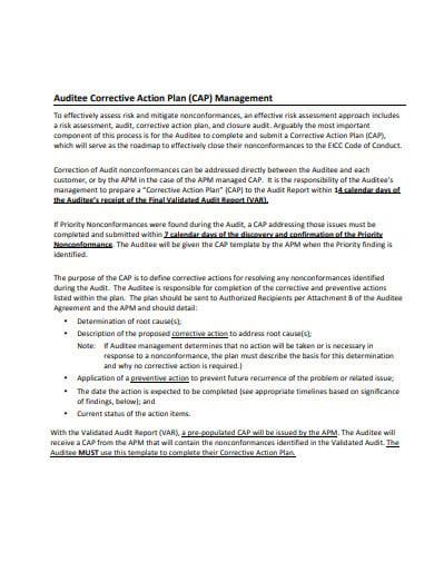auditee corrective action plan template