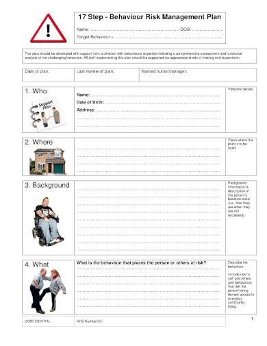 behaviour risk management plan in pdf