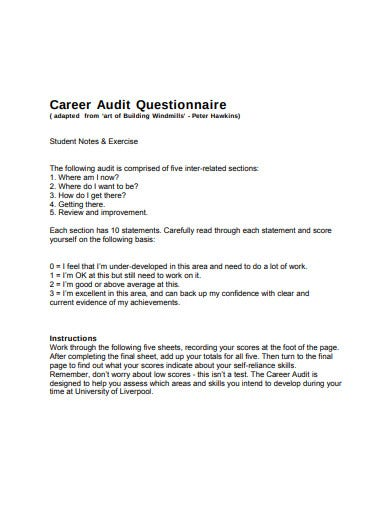 career audit questionnaire example