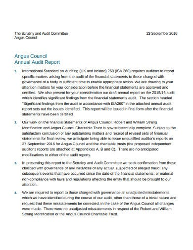 charity annual audit report 1