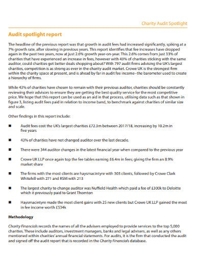 charity audit spotlight report1