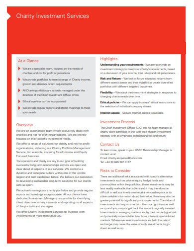 charity investment strategy template