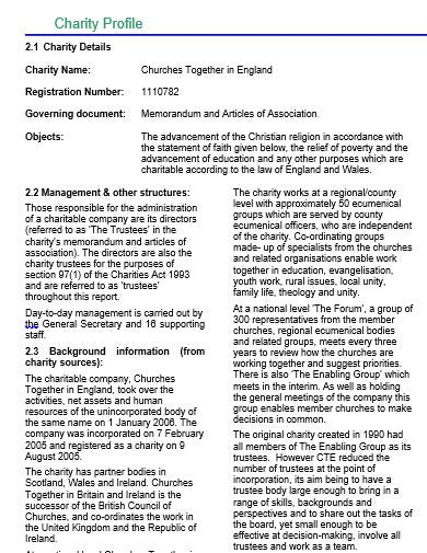 charity profile template in doc
