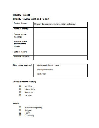 charity review project strategic plan template