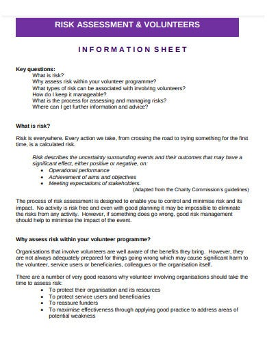charity risk assessment volunteers template
