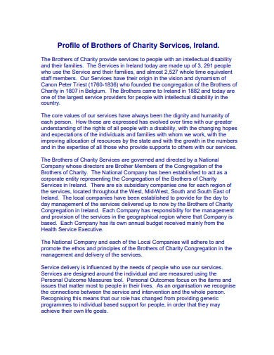 charity strategic plan example
