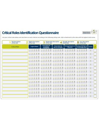 critical roles identification questionnaire1