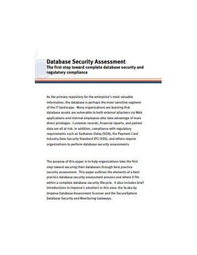 database security assessment example