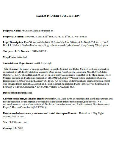 excess property description