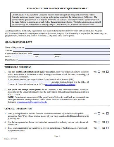 financial audit management questionnaire