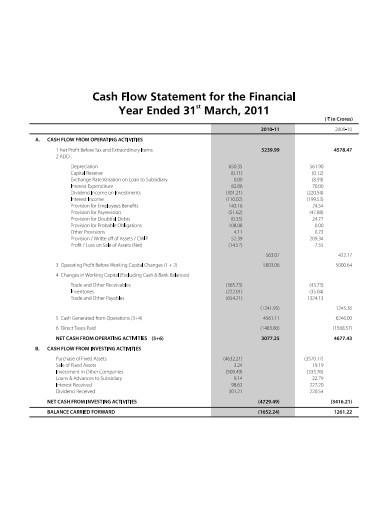 financial year cash flow statement