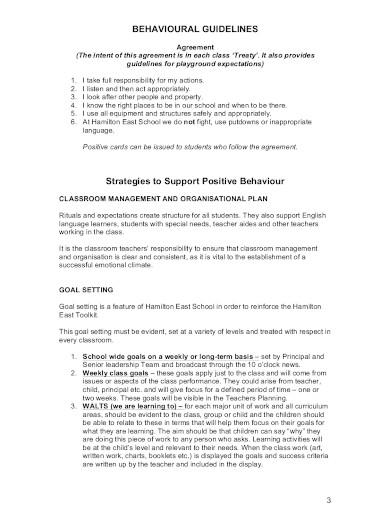 formal behavior management plan in pdf