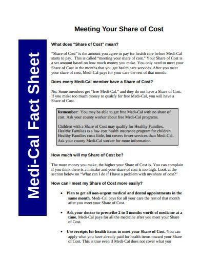 formal medical fact sheet template
