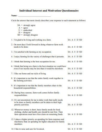 individual motivation questionnaire