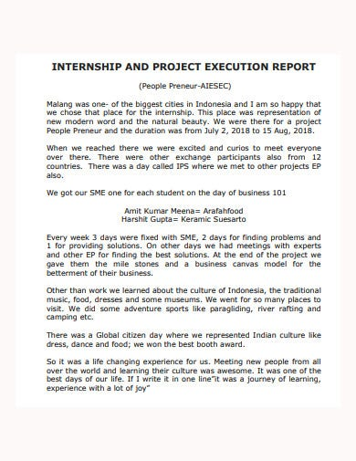 internship and project execution report template
