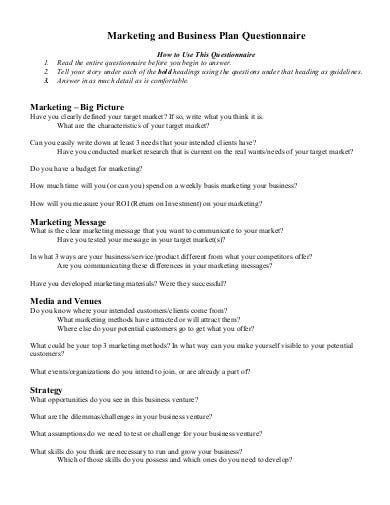 business plan development questionnaire