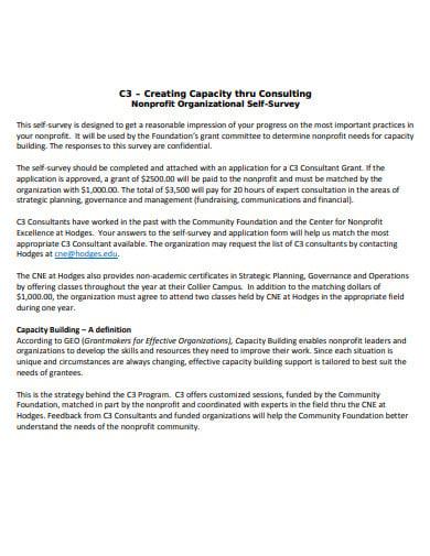 nonprofit organizational self survey template