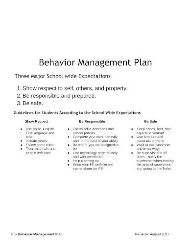 professional behavior management plan in pdf