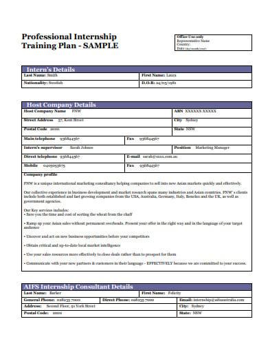professional internship training plan template