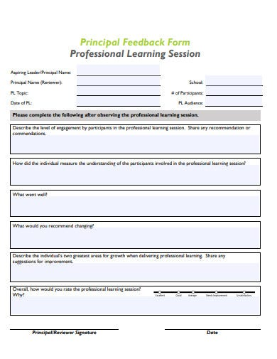 professional-session-feedback-form-in-pdf