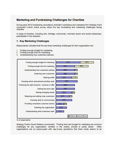 sample charity marketing plan1