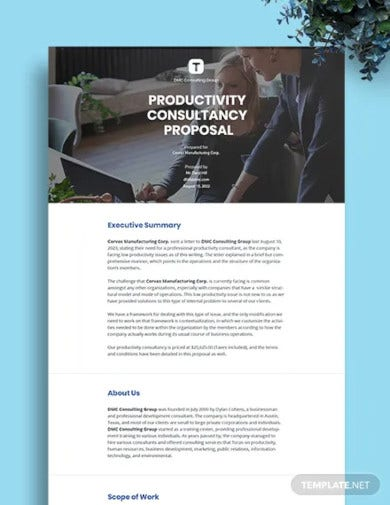 sample consulting proposal1