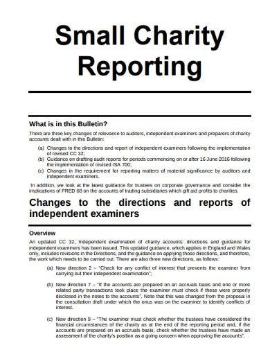 small charity audit report