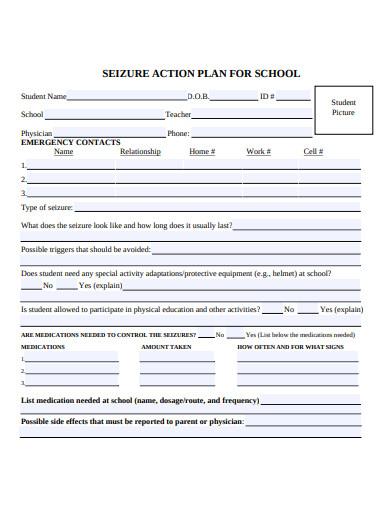 standard school action plan