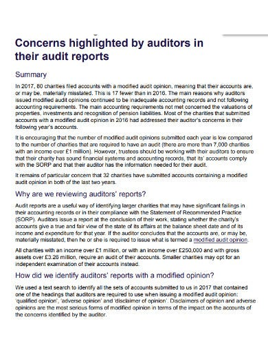 student charity audit report 1