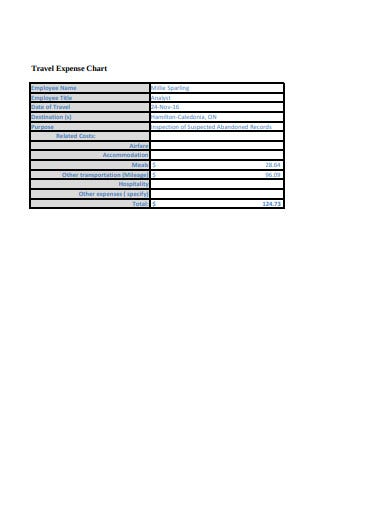 travel expense chart template