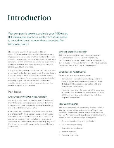 401 k plan audit example