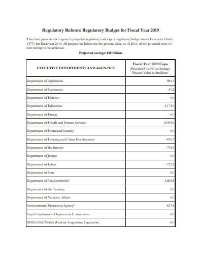 agency regulatory budget