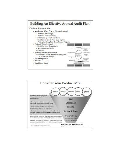 audit test managed care plan template