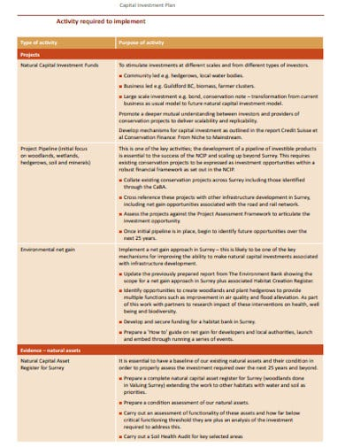 business capital investment plan template