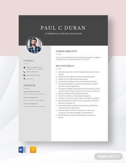 commercial finance manager resume template