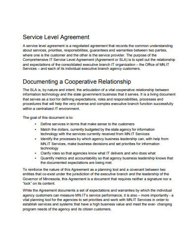cooperative it agency service level agreement template