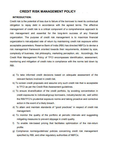 credit risk management policy template