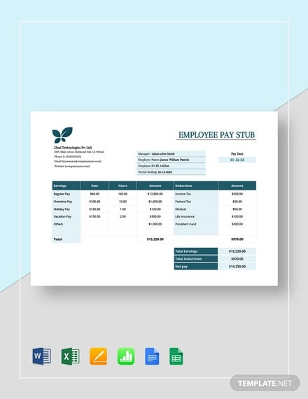 employee pay stub template