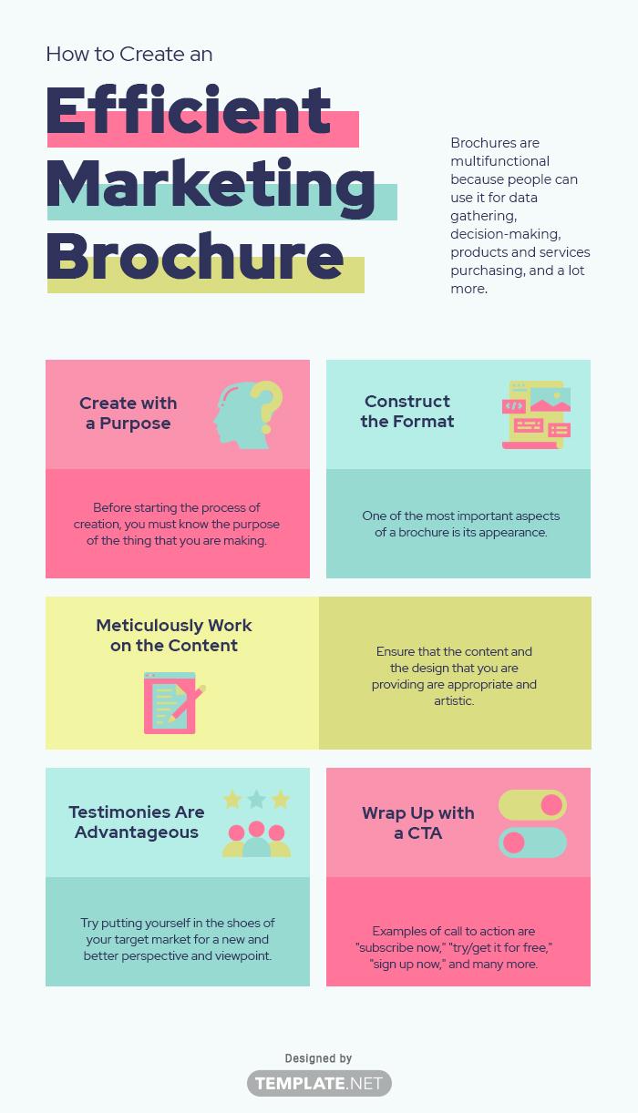 management brochure template