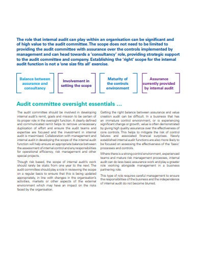 internal audit scope